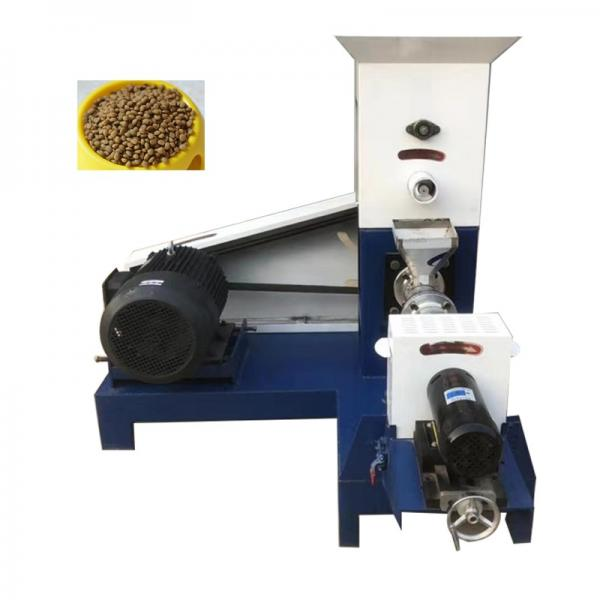 100-3000kg/Hr Industrial Automatic Wet Dry Animal Pet Dog Cat Food Extruder Fish Feed Making Machine Production Line Processing Maker Plant