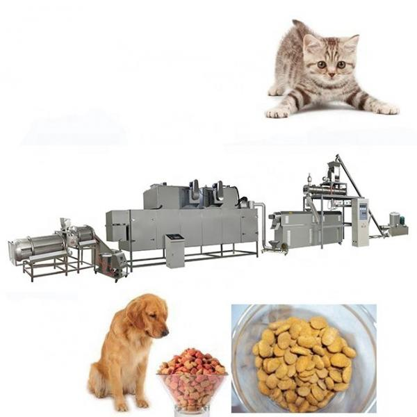 CE Certification Twin Screw Extruder Automatic Pet Food Production Line Dog Food Making Machine