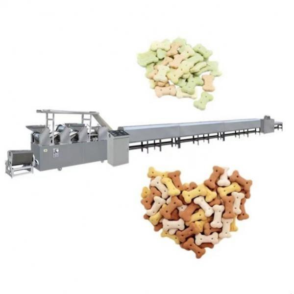 Automatic Pouch Filling Sealing Doypack Rotary Grain Premade Bag Filling Sealing Packing Machine Automatic Pet Dog Food Biscuit Granule Sugar Coffee Premade Doy